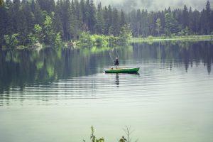 California Fish and Wildlife License Agent Sales Bond